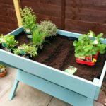 Growing Our Own Fruit, Vegetables and Herbs