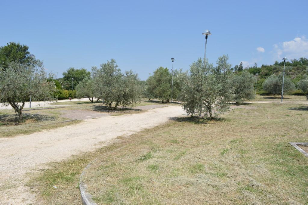 Car park at Carsulae