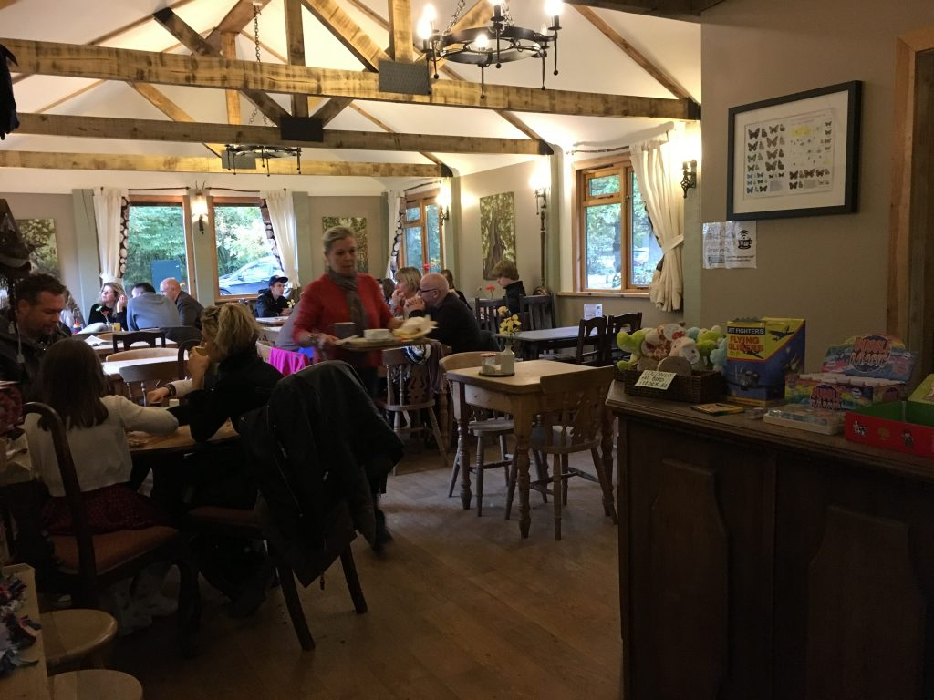 Cafe at Salcey Forest