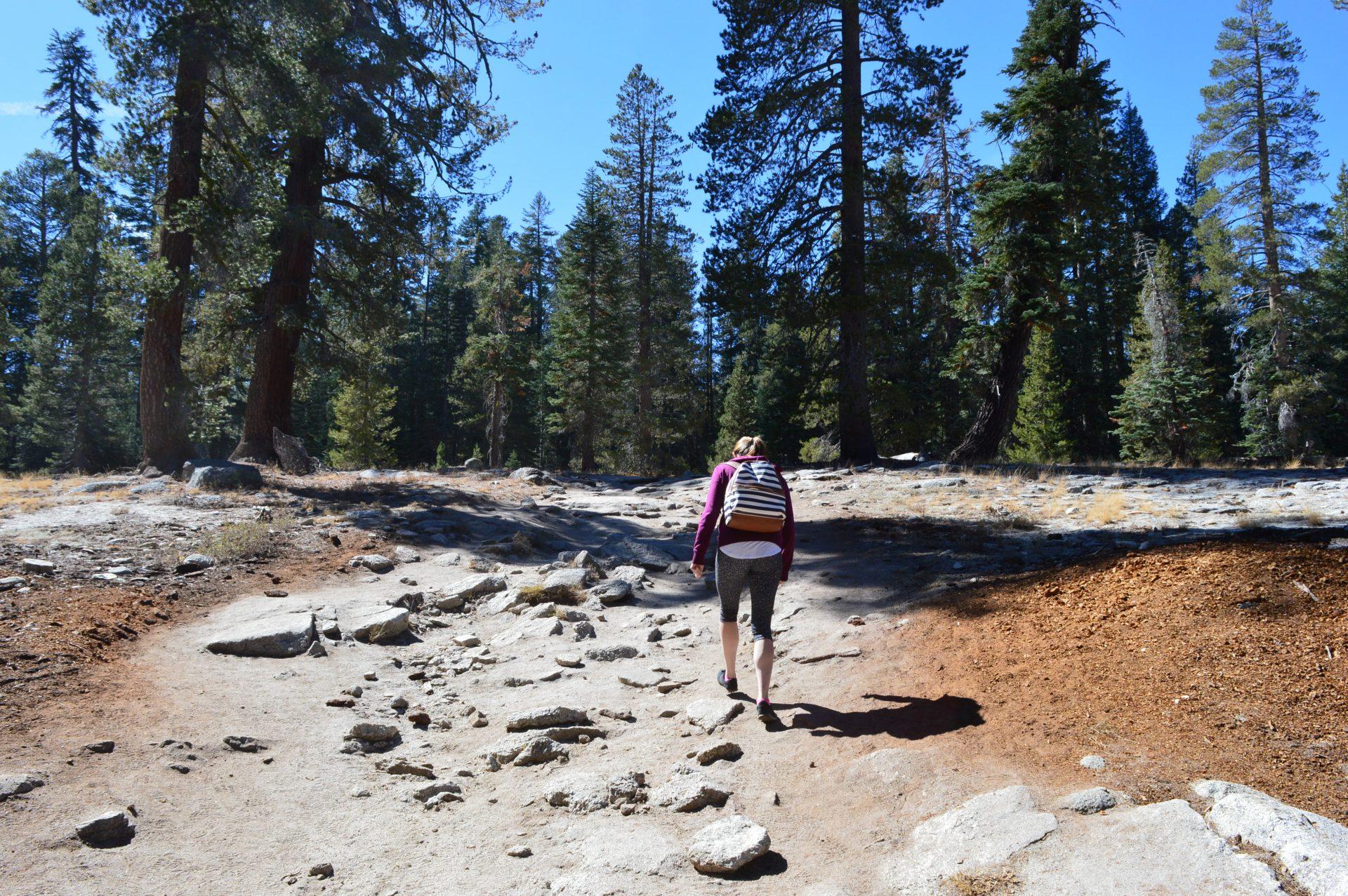 Taft Point Trail
