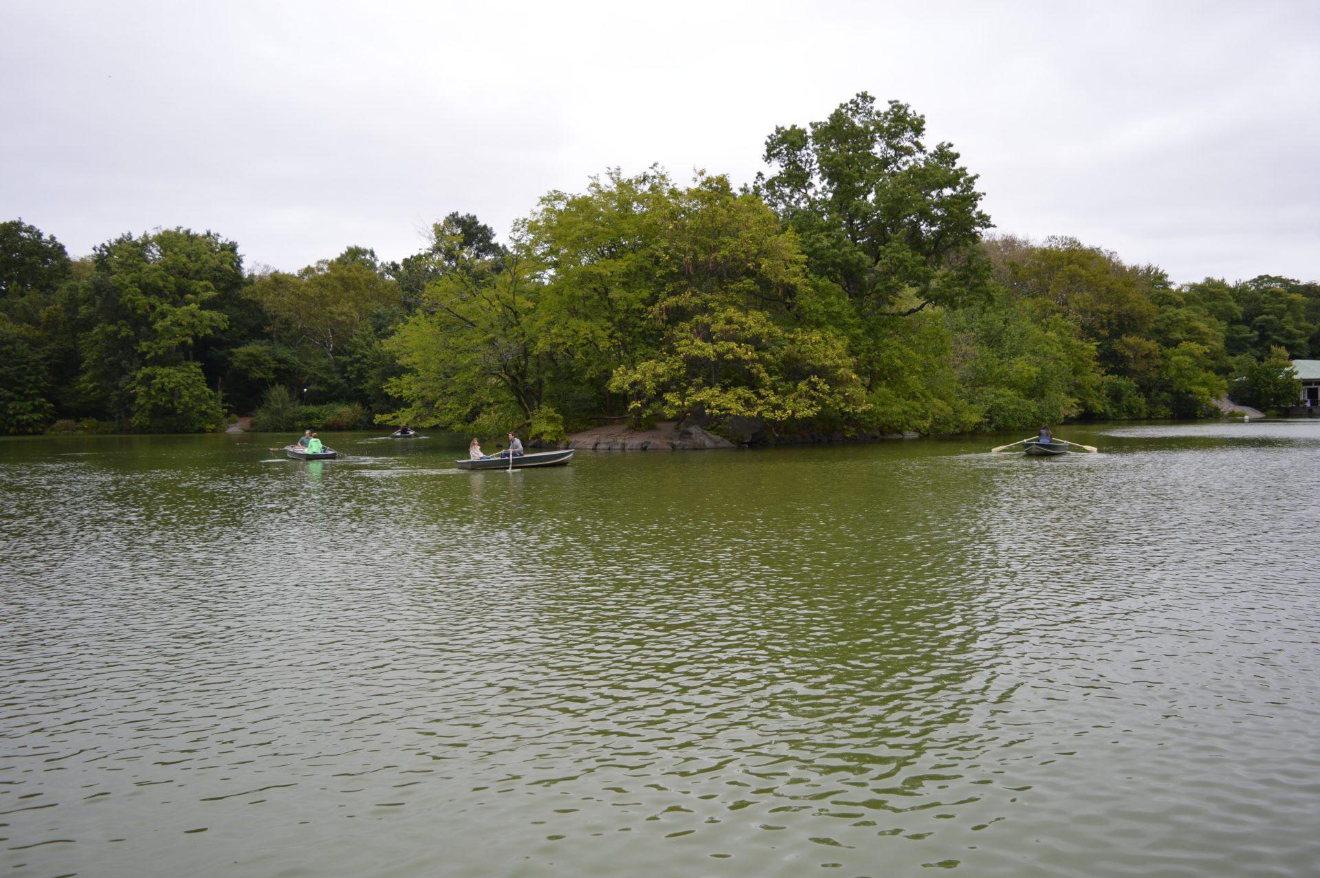 Boating Lake Central Park